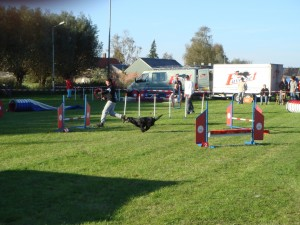 4de plaats jumping, oktober 2007, Westendorp