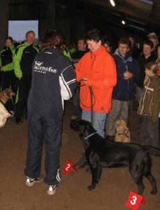 2de prijs vast parcours, februari 2007, Vries (manege)